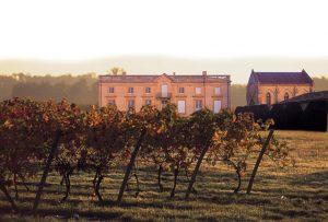 le-vignoble-du-frontonnais-au-chateau-cransac-fronton-c-adt82